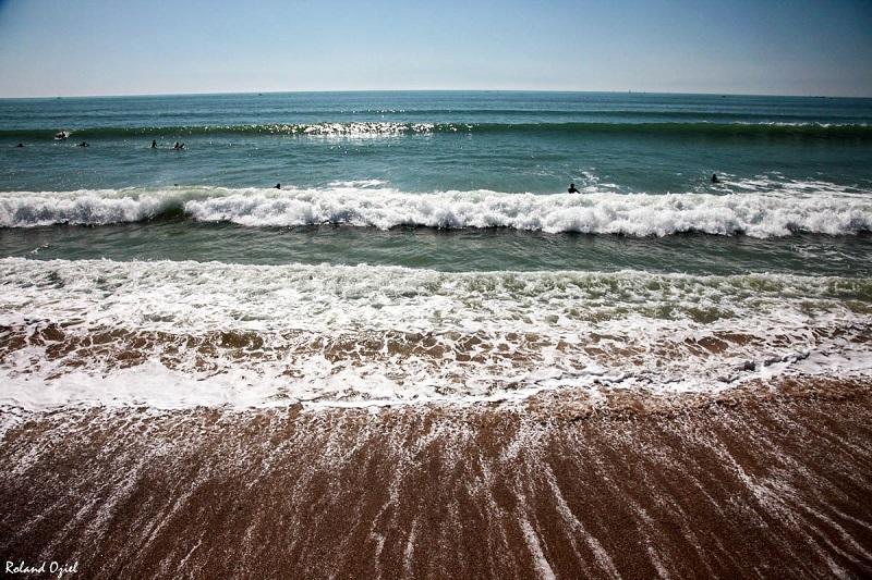 Hôtel Calme des Pins à deux pas des plages des Sables d'Olonne